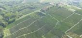 Paesaggio Vitivinicolo Castagnolese